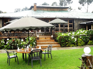 Mountain Gorilla View Lodge - Gay Expeditions